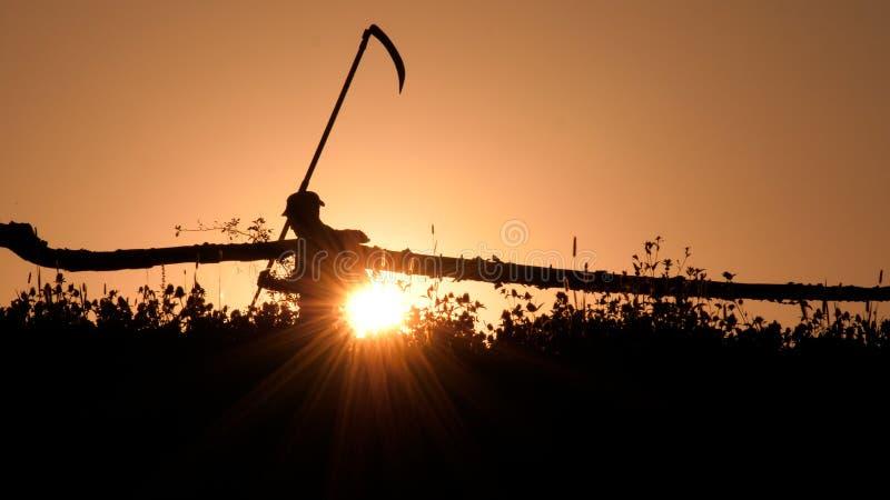 Silhouet van jonge landbouwer in dorp dat zich met de harkhulpmiddel van de sikkelzeis bevindt in de groene zomer Het grote hand  royalty-vrije stock fotografie