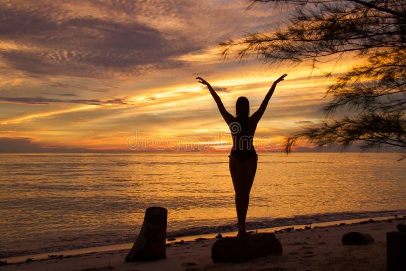 Silhouet van jonge vrouw bij de kust in balletpositie met wapens zoals vogelvleugels royalty-vrije stock fotografie