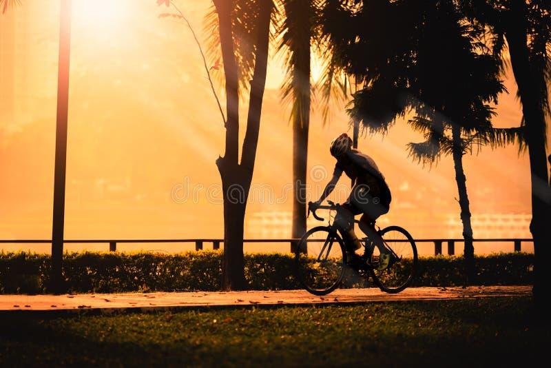 Silhouet van jonge vrouwenfietser op zonsondergang stock foto's