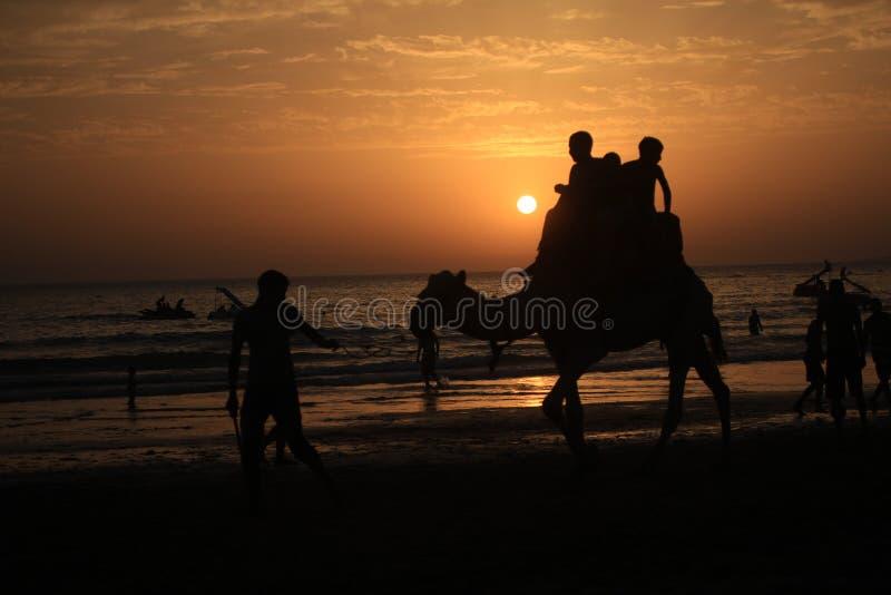 Silhouet van mensen en een kameel in een strand in Agadir, Marokko royalty-vrije stock afbeelding