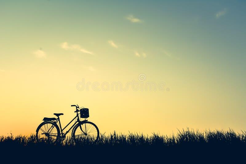 Silhouet van oude fiets op gras royalty-vrije stock foto's