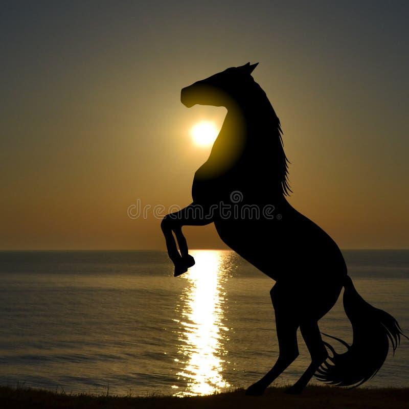 Silhouet van paard het grootbrengen omhoog op een strand in de zonsopgang royalty-vrije stock foto