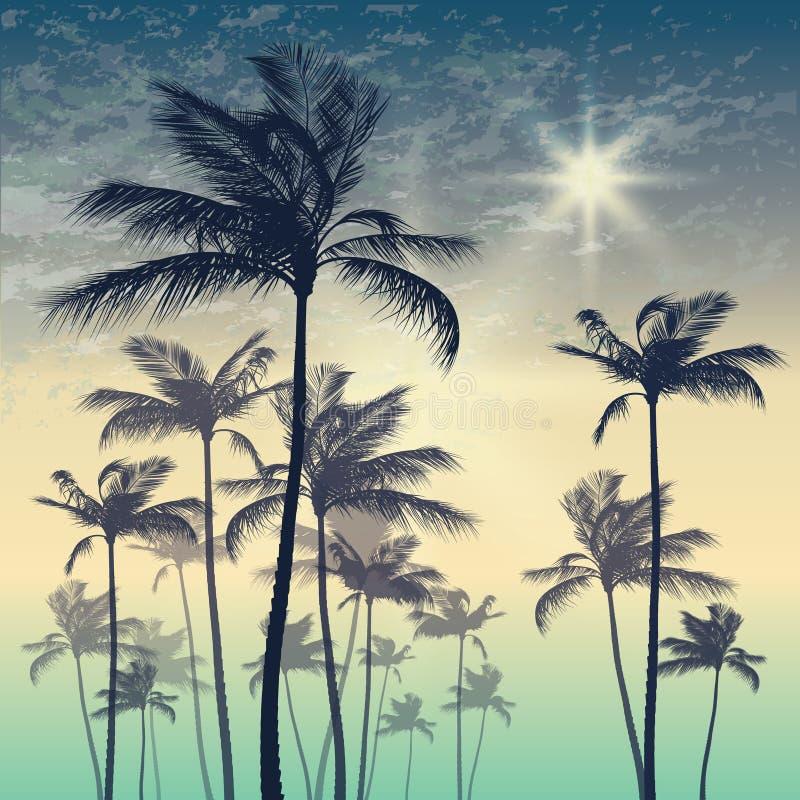 Silhouet van palm en zonsonderganghemel Vector illustratie royalty-vrije illustratie