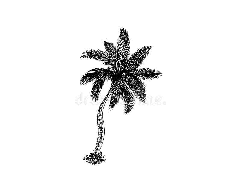Silhouet van palmen op het eiland de vectorillustratie isoleerde witte achtergrond vector illustratie