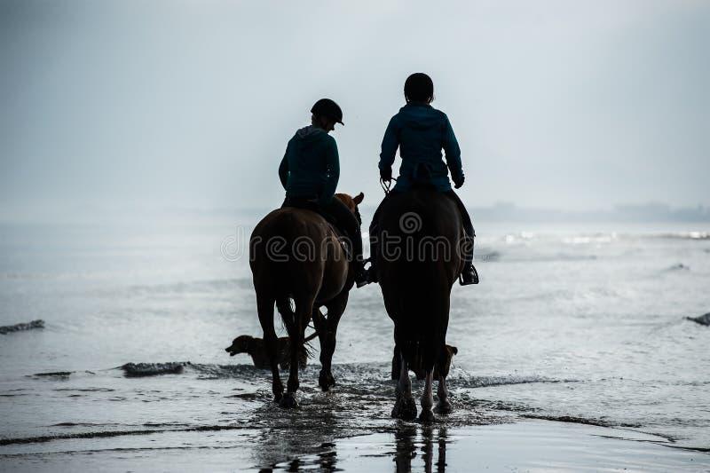 Silhouet van Ruiters bij de strand het berijden paarden stock fotografie