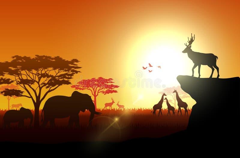 Silhouet van savannas in de middag royalty-vrije illustratie