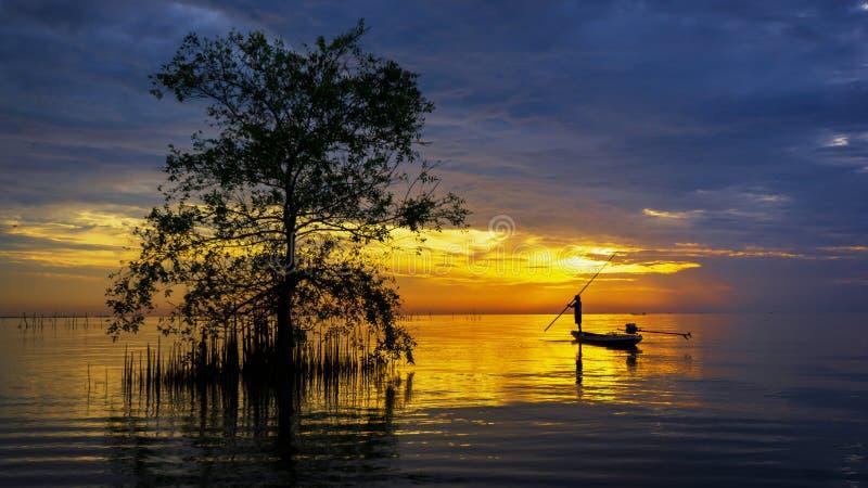Silhouet van visser in boot met mangroveboom in meer royalty-vrije stock foto