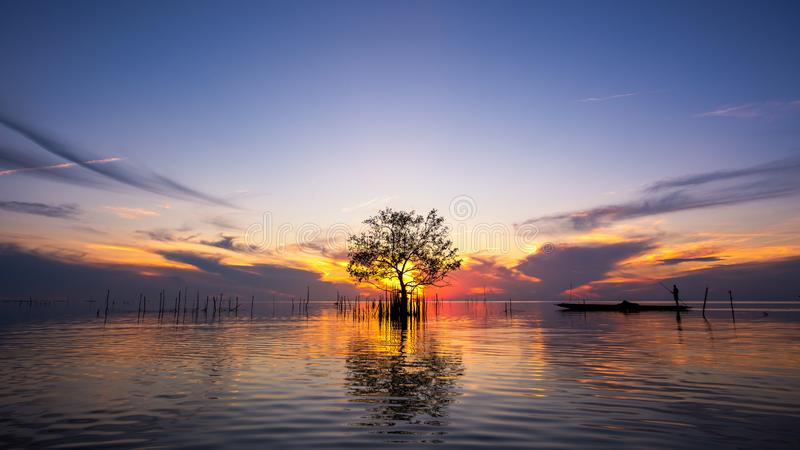Silhouet van visser in boot met mangroveboom in meer op zonsopgang bij Pakpra-dorp stock afbeelding