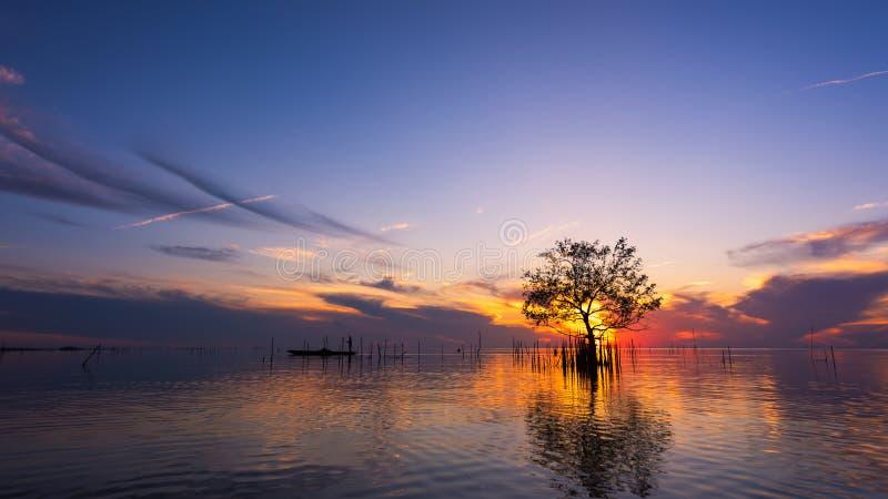 Silhouet van visser in boot met mangroveboom in meer op zonsopgang bij Pakpra-dorp royalty-vrije stock afbeeldingen
