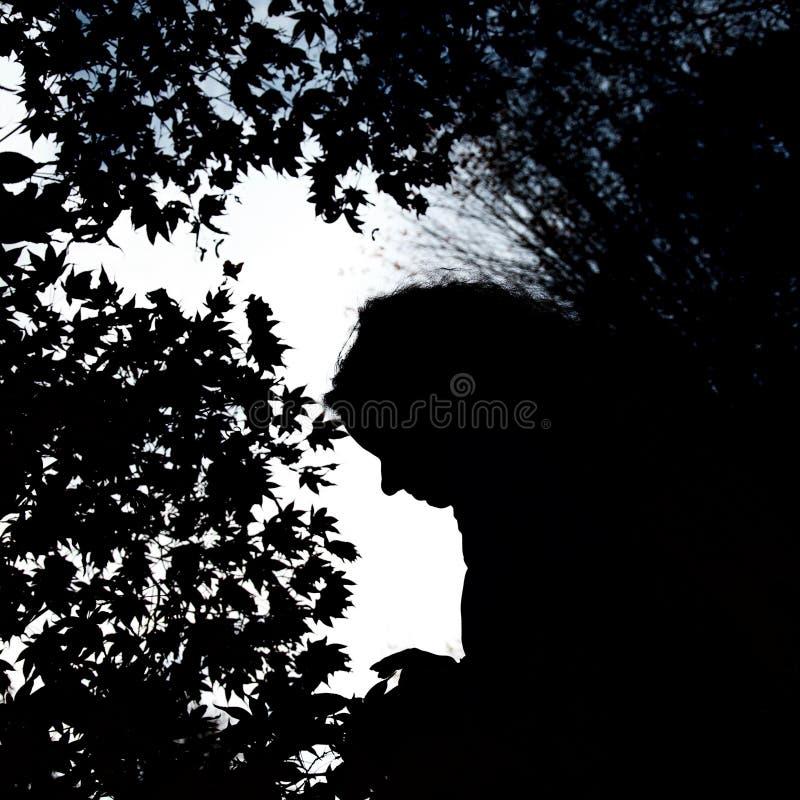 Silhouet van vrouwelijke hoofd en esdoornbladeren tegen de hemel royalty-vrije stock afbeeldingen