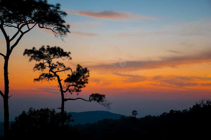 silhouetconcept; Sunset View Point op Phu Ruea National Park, Loei, Thailand, Golden sky background, twilight sky after sunset stock afbeelding