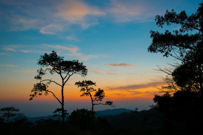 silhouetconcept; Sunset View Point op Phu Ruea National Park, Loei, Thailand, Golden sky background, twilight sky after sunset royalty-vrije stock fotografie