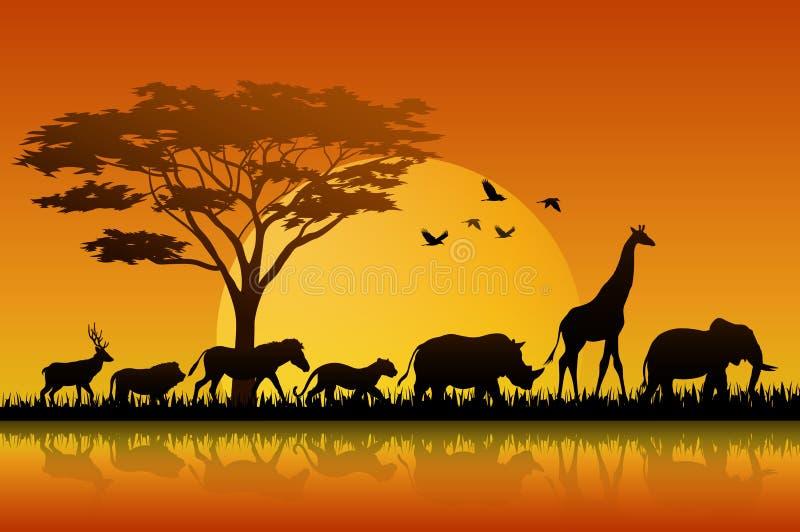Silhouetdieren in meersavannas op zonsondergang royalty-vrije illustratie