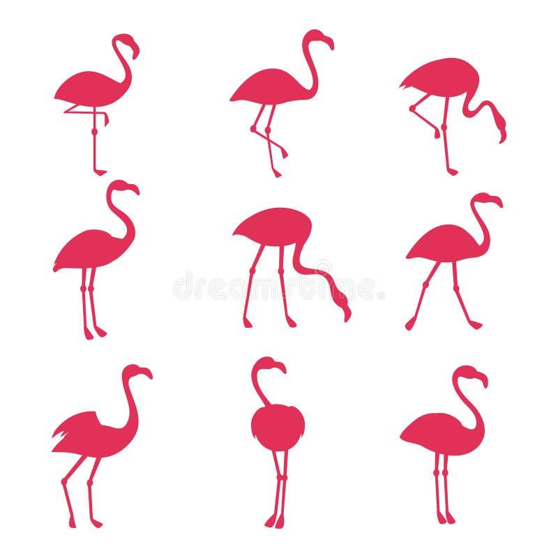 Silhouetes cor-de-rosa do flamingo isolados no fundo branco ilustração stock