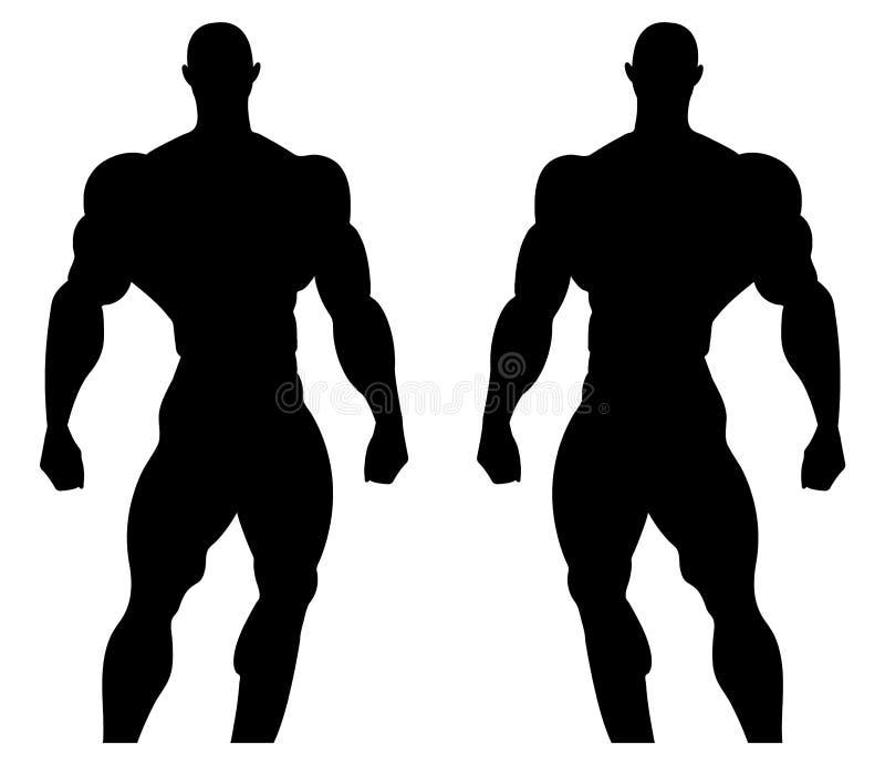 Silhouetillustratie van een bodybuilder Mannelijke spieranatomie Vector illustratie royalty-vrije illustratie