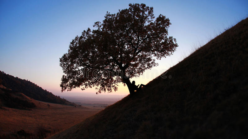 Silhouetlezing tegen boom bij zonsondergang stock foto