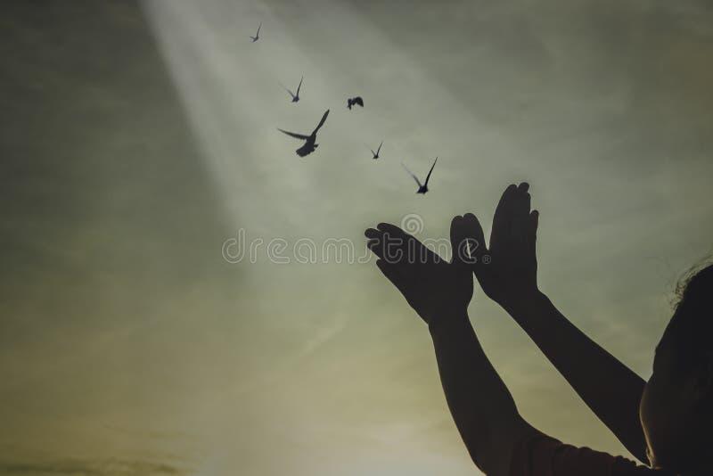 silhouetmensen die hand maken als vogel en versievogels om vrijheid te zijn royalty-vrije stock foto's