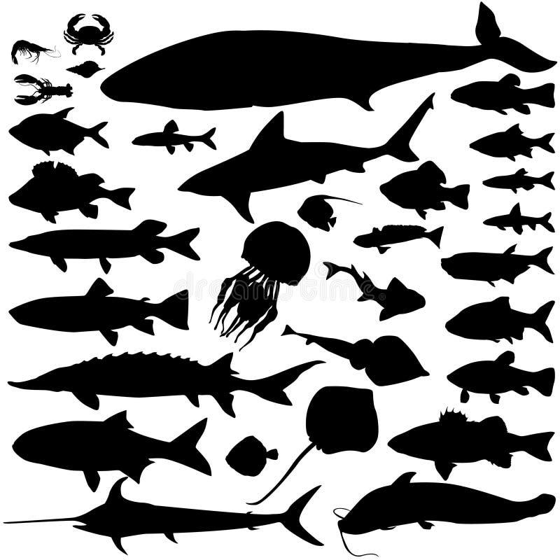 Silhouetreeks van rivier en het overzeese vissen Mariene vissen en zoogdieren Overzees royalty-vrije illustratie