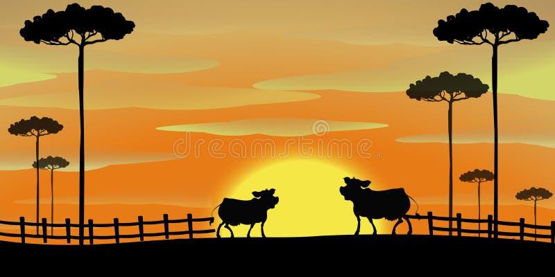 Silhouetscène met koeien op het landbouwbedrijf vector illustratie