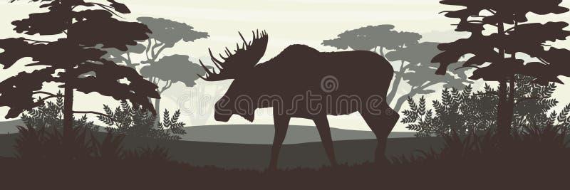 silhouette Älg med stora horn på bakgrunden av lövskogen vektor illustrationer