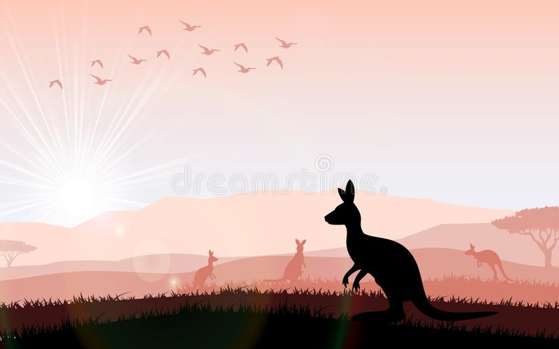 Silhouette кенгуру подавать в ярком заходе солнца иллюстрация штока