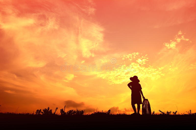 Silhouette Asian boy fishing royalty free stock images