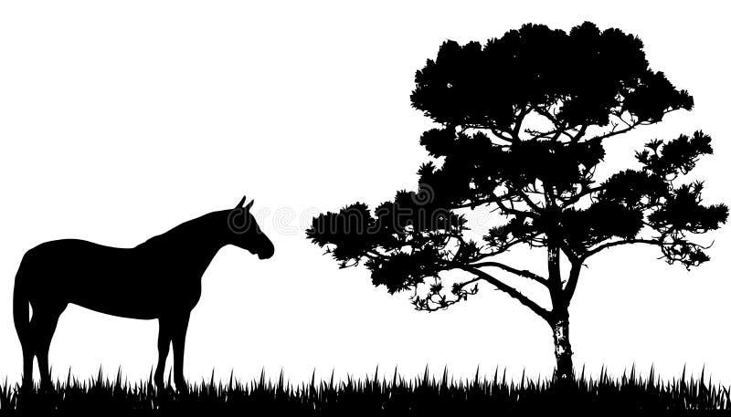 Silhouette av hästen och treen royaltyfri illustrationer