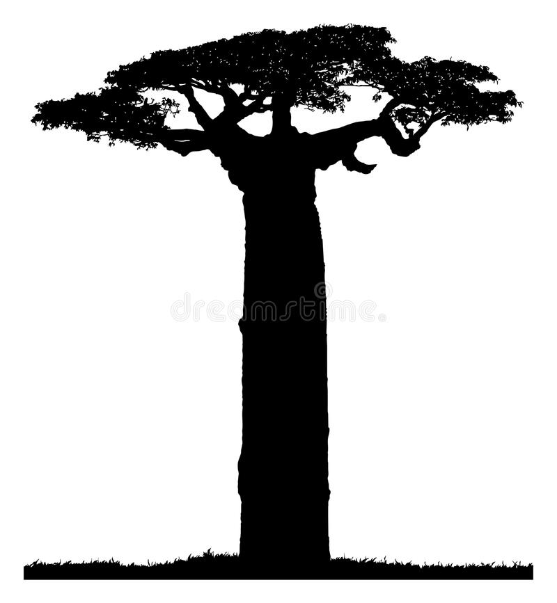 Silhouette of a baobab tree vector illustration