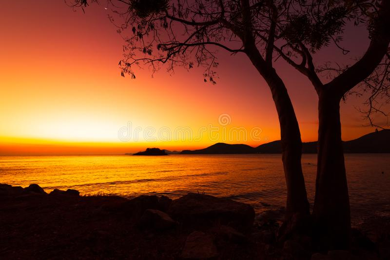 Silhouette beach, tree and mountain with sunset, sunrise. Seascape background. Silhouette beach, tree and mountain with sunset, sunrise stock photo