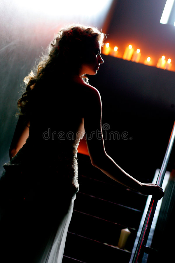 Silhouette of a beautiful bride royalty free stock photo