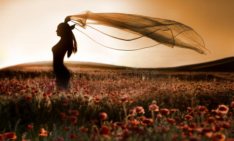 Silhouette of beautiful girl in the poppy field stock photos