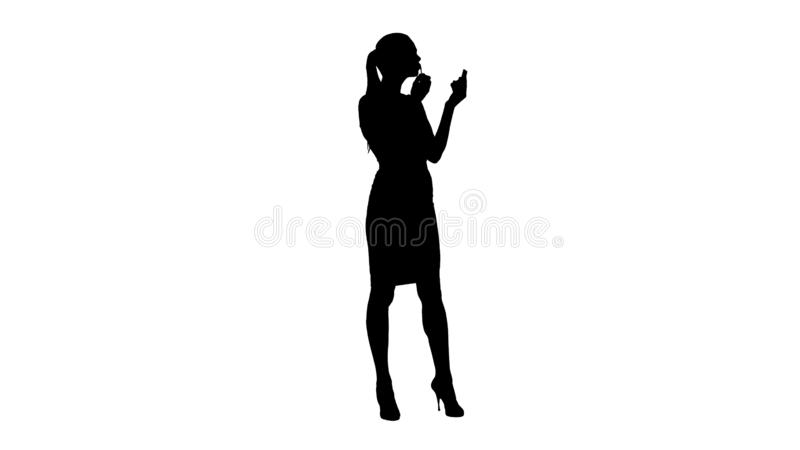 Silhouette Beautiful woman, dyes her lips lipstick pink, looking in the mirror. stock photo