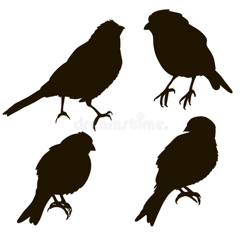 Silhouette of a bird isolated. Different angles stock illustration