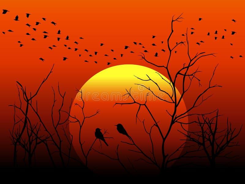 Silhouette bird and tree branch on orange sun vector design royalty free illustration