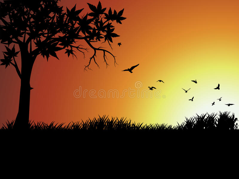 Silhouette bird and tree outside. Silhouette bird and tree at sunset,in South Africa stock illustration