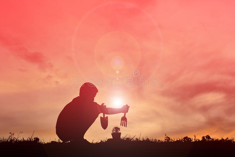 Silhouette boy planting a tree. At sunset stock photography