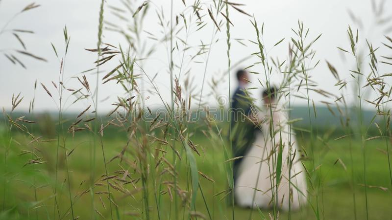 Silhouette of a bride in a beautiful white dress and groom dancing on the meadow. teamwork of a loving couple. happy royalty free stock photography
