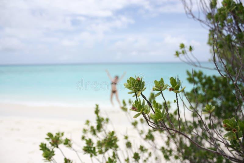 Silhouette brouillée de la fille sautante sur la plage sablonneuse blanche sur l'île de Kuramathi Maldives pendant les vacances d image stock