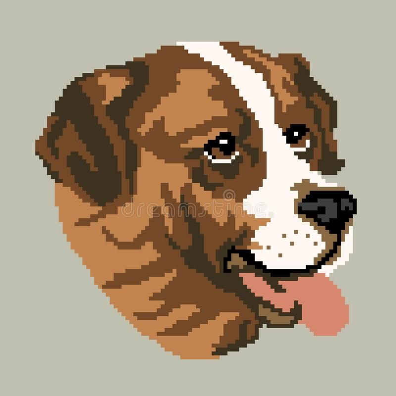 The silhouette of a brown dog breed St. Bernard is a muzzle, the head is drawn in the form of squares, pixels stock illustration