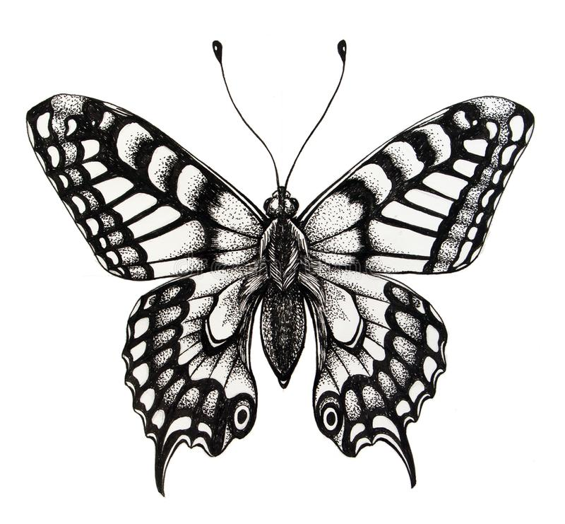 Silhouette of butterfly. Symbol of soul, immortality, rebirth and resurrection. Black and white illustration. Silhouette of butterfly. Tattoo butterfly. Symbol stock illustration
