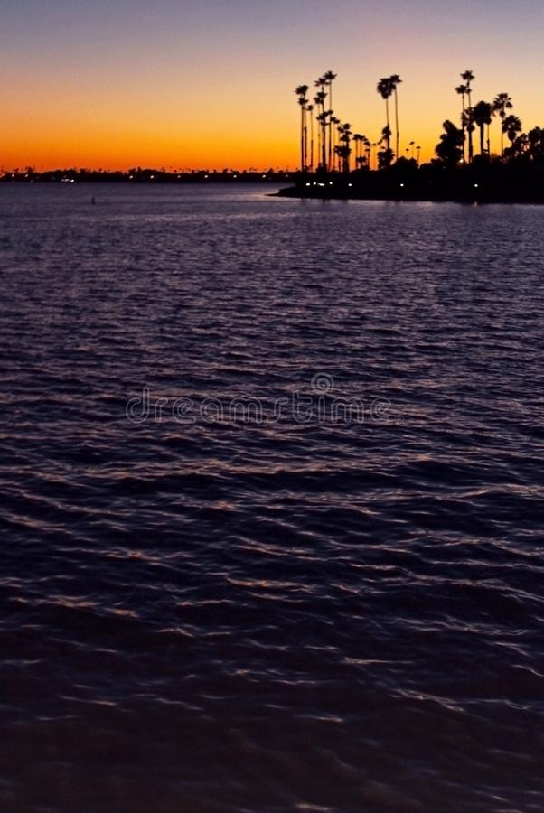 Silhouette of California Palm trees at dusk stock image