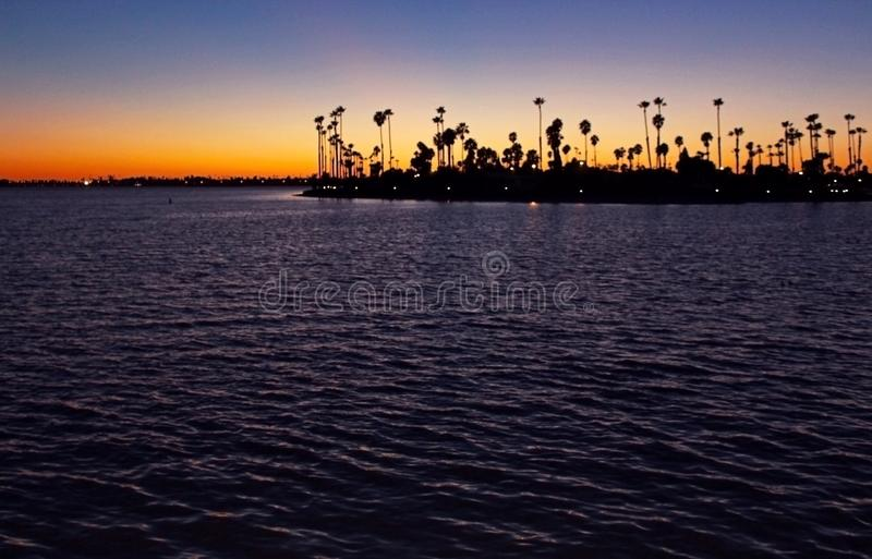 Silhouette of California Palm trees at dusk stock images