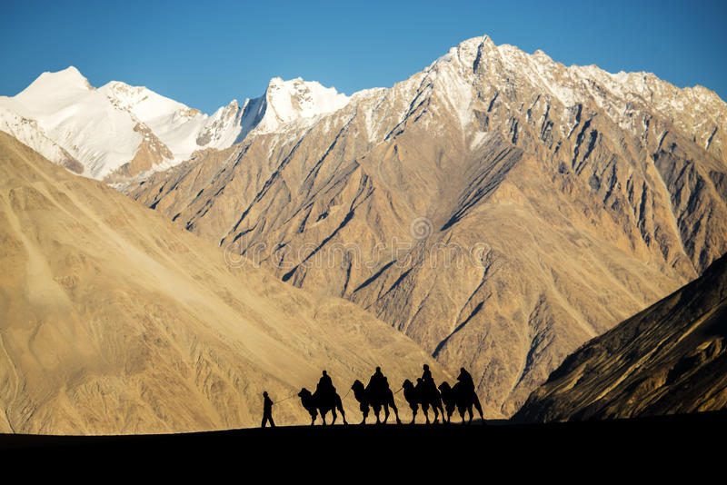 Silhouette of caravan travellers riding camels Nubra Valley Ladakh ,India. September 2014 stock image