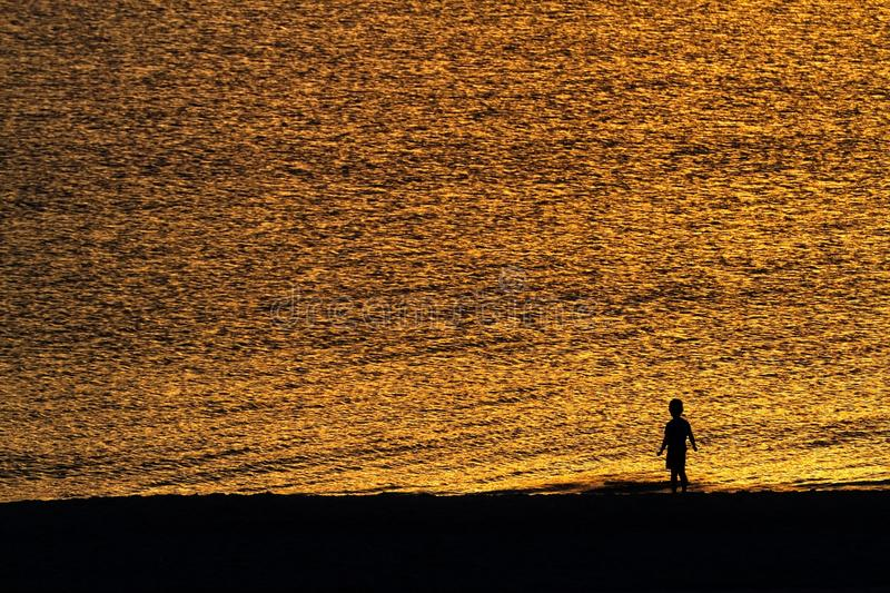 Silhouette of child on the beach. With golden water in the background stock images