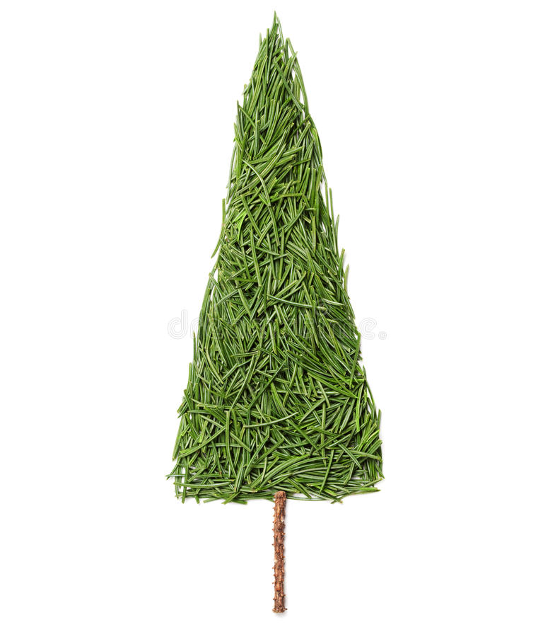 Silhouette of Christmas fir tree made of pine needles on a white background stock photo