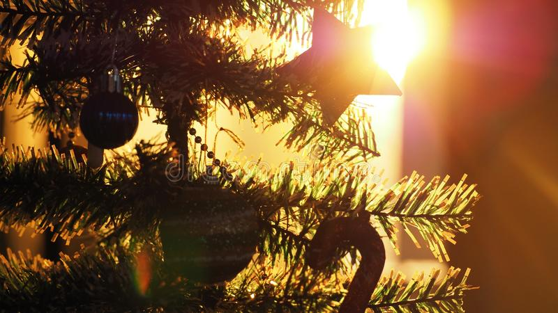 Silhouette of Christmas tree with Christmas decoration in sunset royalty free stock image
