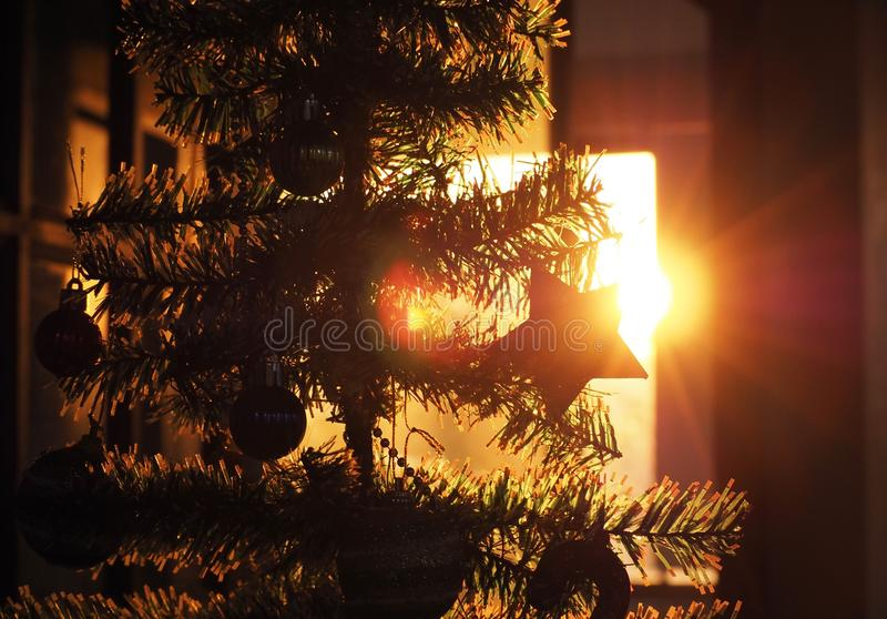 Silhouette of Christmas tree and Christmas decoration in sunset,  Christmas celebration stock image