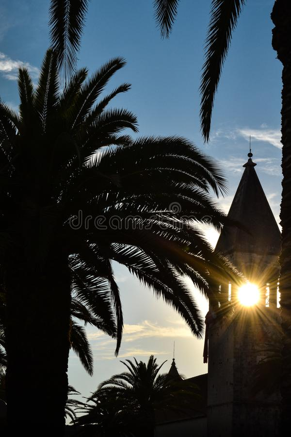 Silhouette of church tower and palm tree in trogir croatia stock photography