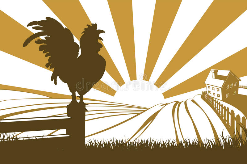 Silhouette cockerel crowing on farm. Rolling hills in a farm at sunrise with a farmhouse in the distance and a rooster or cockerel crowing on a fence vector illustration