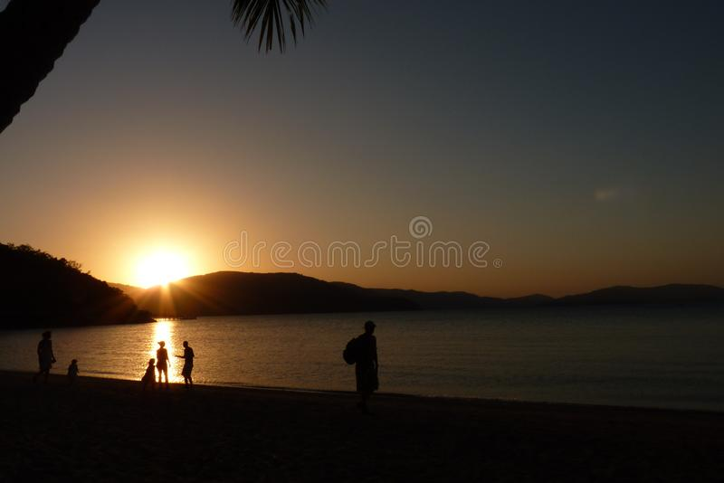 Silhouette of coconut palm tree in caribbean beach at sunset stock photography
